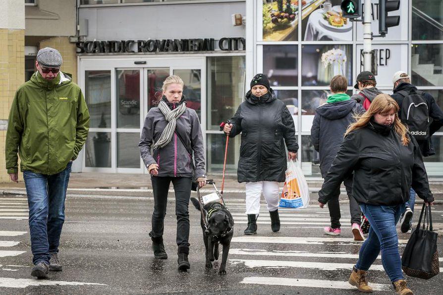 """Raisa Kuuselan opaskoira """"Heppu"""" työskentelee liikenteessä koulutuksessa opittujen kaavojen ja sääntöjen mukaisesti, ja poikkeamat niistä voivat hämmentää koiraa."""