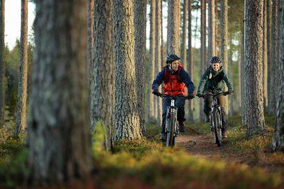 Oulun seudulle syntyi uusi matkailun rengastie – lue vinkit elämyslomalle pohjolan upeassa luonnossa