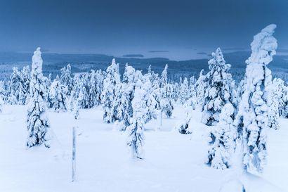 Talvipyöräily saa säännöt Riisitunturilla –myös lumettoman ajan pyöräilyn laajentaminen mahdollista
