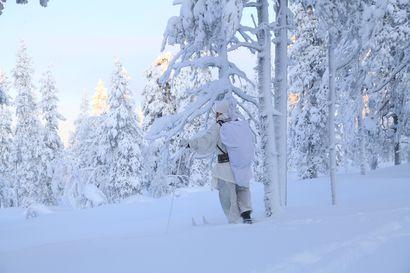 Metsästäjät hiihtivät yli sata kilometriä yhden lintusaaliin eteen – talvipyynnissä saatiin yhtä paljon metsoja kuin vuosi sitten