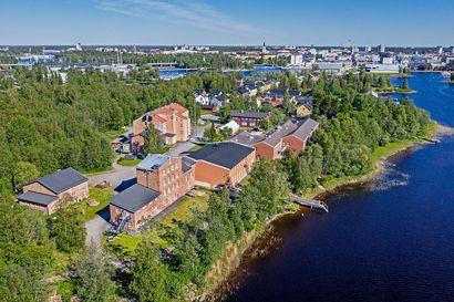 Terassin rakennustöiden keskeytys pysyi voimassa Pikisaaressa