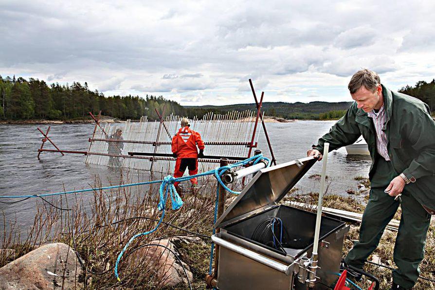 Tutkija Atso Romakkaniemi Kattilakosken rannalla. Tutkimusapulaiset Mikko Leminen ja Jani Hakkola jatkavat kaikuluotaimen ohjausaitaa.
