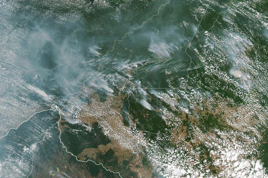 NASA:n satelliitin 13. elokuuta ottamasta kuvasta on nähtävissä useita metsäpaloja Amazonasin, Paran, Mato Grosson ja Rondonian osavaltioissa Brasiliassa. Brasilian avaruusinstituutin mukaan  maan alueella sijaitsevissa osissa Amazonin sademetsää on tänä vuonna ollut ennätysmäärä metsäpaloja.
