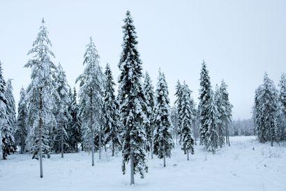 Kurenalla kylmintä Suomessa – keskiviikkoaamuna Pudasjärven lentokentän mittari näytti -33,1 asteen lukemia