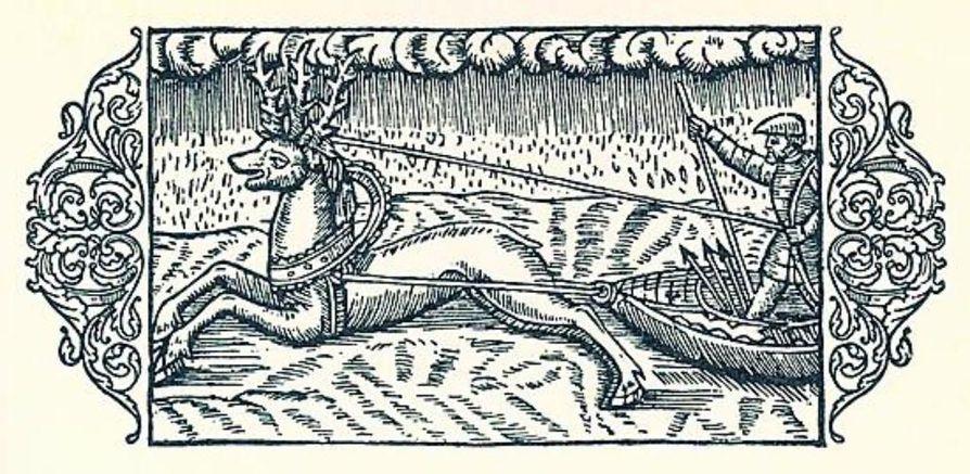 Olaus Magnuksen kirja on kuvitettu italialaisen piirtäjän tekemillä puupiirrroksilla. kuvittaja ei aina ole tiennyt, mikä on tarua ja mikä totta, siksi porot ovat kolmisarvisia.