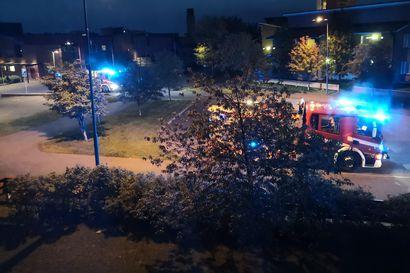 Kerrostalokaksiossa syttyi tulipalo Oulun Kaakkurissa – kolme ihmistä vietiin hoidettaviksi ja kissa eläinlääkäriin