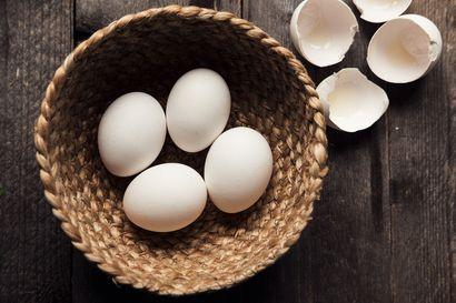 """Virastosta rauhoitteleva viesti kananmunan ystäville – """"Tällaista tapahtuu kerran vuodessa, jos sitäkään"""""""