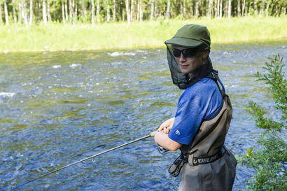 Jokikalastajat valmiita muuttamaan tapojaan taimenkannan vuoksi – villin kannan häviäminen voisi vähentää selvästi Oulanka-, Kitka- ja Kuusinkijokien vetovoimaa