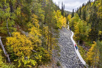 Isokurun reitin uusiminen alkaa Pyhä-Luoston kansallispuistossa – Reitti suljetaan töiden ajaksi