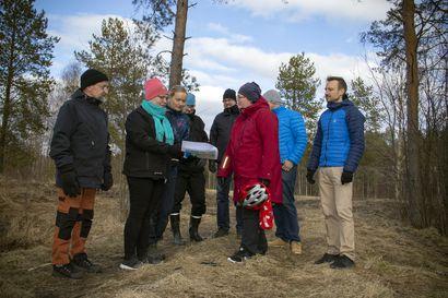 Tupoksen kyläyhdistyksen haaveet toteutumassa: lähivirkistysalueelle suunnitellaan frisbeegolfrataa, pulkkamäkeä, uutta laavua ja juoksuportaita