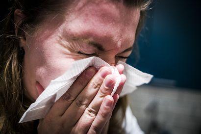 Influenssakausi on Raahen seudulla edelleen rauhallinen