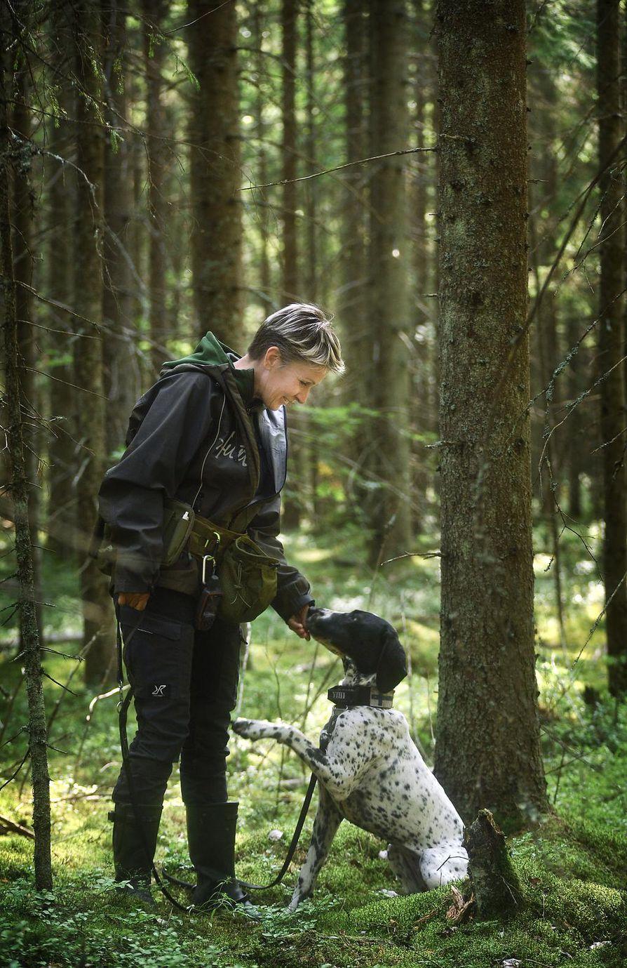 Metsässä leijuu valtava hajusekoitus. Tanja Karpelan mukaan yksi haaste koulutuksessa on saada koira kokemaan palkitseviksi myös hajut, jotka eivät sitä luontaisesti kiinnosta.