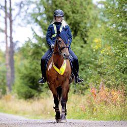 Lähesty rauhassa ja pidä riittävä välimatka – säikähtänyt hevonen voi olla arvaamaton