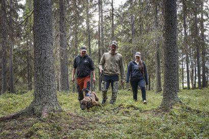 """Laukaus lähti, kun karhu oli 20 metrin päässä – Jani Rinnemaa muistelee karhunkaatoa ja valmistautuu ensi yönä alkavaan metsästykseen: """"Karhun elämään ei opi varmaan millään"""""""