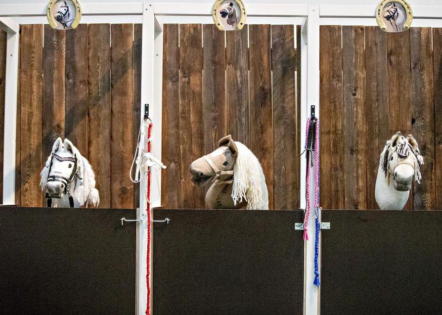 Oulun taidemuseossa on esillä Kati Leinosen hevosaiheinen valokuvanäyttely Äimärautio. Siihen liittyen taidemuseoon on rakennettu Ratsutila Laukka, jossa keppihevostouhujen lisäksi on esillä lasten tekemiä videoita ja Leinosen valokuvaamia keppihevosmuotokuvia.