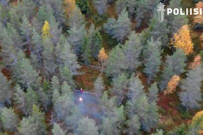 Marjastaja eksyi Posiolla - poliisi löysi kadonneen dronen avulla
