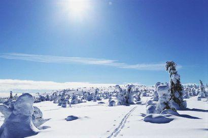 Koronavuosi kasvatti Lapin kansallispuistojen kävijämääriä, vain Perämeri tuli alaspäin