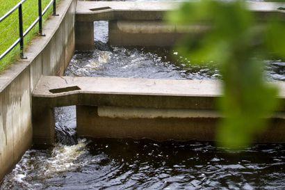 Kaksi kolmasosaa vesistöhankkeista edelleen ajan tasalla – siltikin lähes sata valtion hanketta kokonaan tai osin vanhentuneita