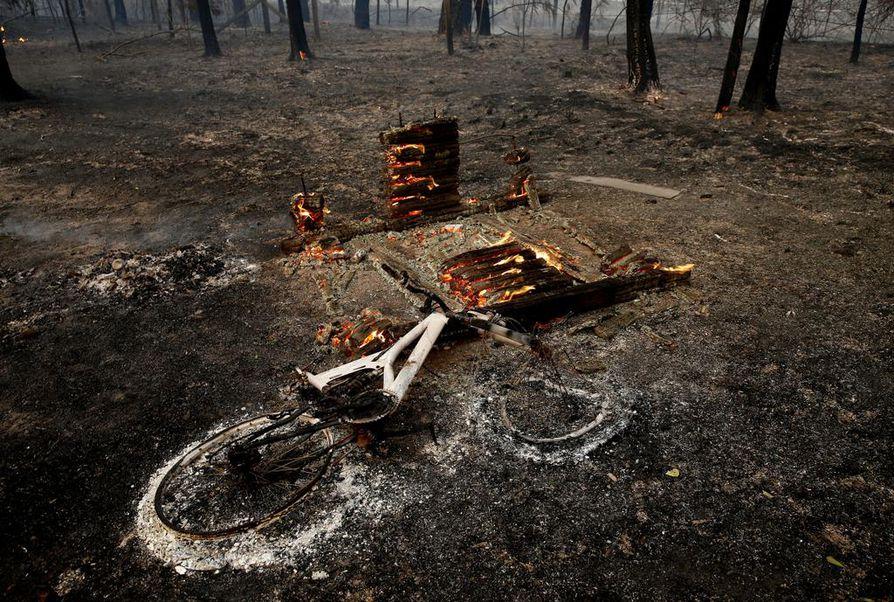 Hiiltynyt lastenpyöränrunko makasi pensaspaloalueella New South Walesin Hillvillessä.