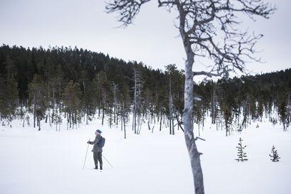 Metsät turvaavat hyvinvointia ja suojeluarvoja