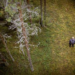 Antti Ylitalo suojeli kymmenen hehtaaria omia metsiään Limingassa ja jälkikasvukin piti päätöstä hyvänä – metsänomistajien suojeluinto on yllättänyt viranomaiset