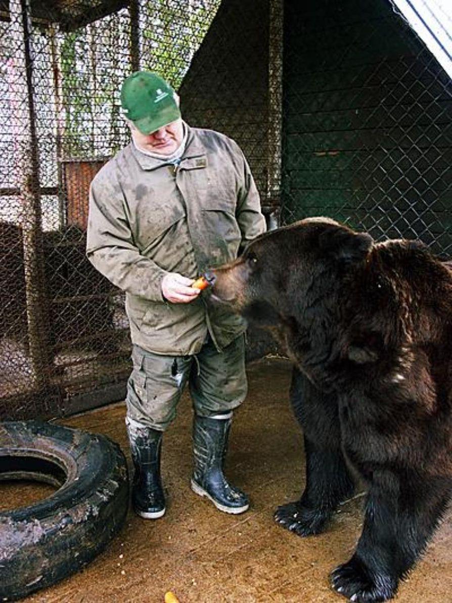 Vyöti-karhu on Sulo Karjalaisen kaveri.