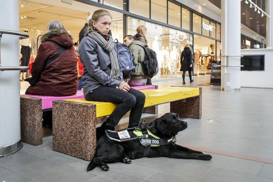Söpö koira kerää katseita, mutta moni ohikulkija ei ymmärrä, että töissä ollessaan se ei kaipaa huomion herpaantumista. Kauppakeskuksessakin sen täytyy toimia Raisa Kuuselan silminä.