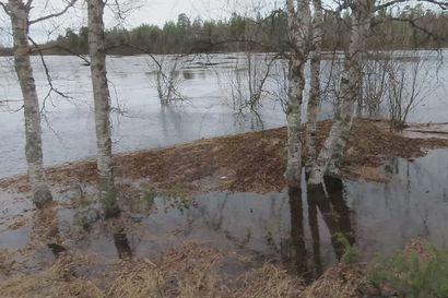 Tulva nousee nyt Ivalojoessa