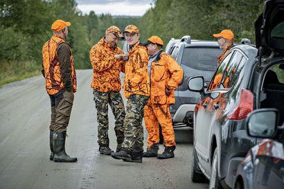 Pieni rapse kertoi karhun menneen lähellä–Olimme mukana jahdissa, kun ennätyssuuri karhunmetsästys alkoi