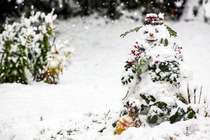 Talvi yllätti ruskan – Lapin Kansan lukijoiden syyskuun sääkuvissa vuodenajat kohtaavat valloittavasti
