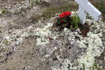 Hautausmaan aitaa korotetaan Sevettijärvellä – Lapin ortodoksinen seurakunta haluaa varmistaa, että porojen tekemät tuhot eivät enää toistu