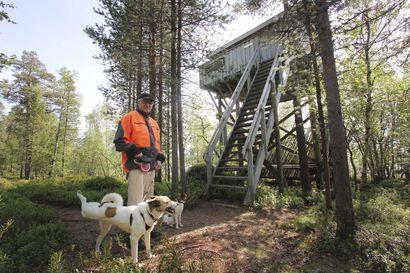 Metsähallitus purkaa lintutorneista lahoimmat, muutama on annettu toisten hoitoon – katso video lintutornilta