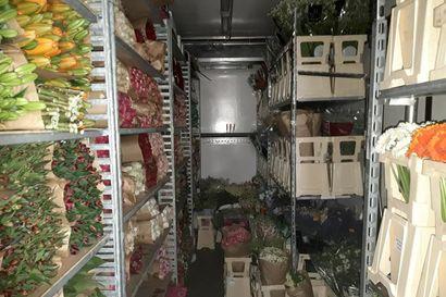 Suomen historian suurimpiin kuuluvan huumekaupan lonkerot ulottuvat ympäri maata – huumeita kuljetettiin kukkien seassa, katukauppa-arvo noin 20 miljoonaa euroa