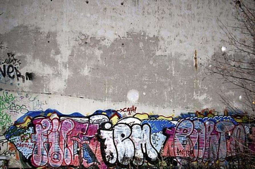 Graffiti on julkisesti näkyvään paikkaan tehty kirjoitus tai maalaus.Tagi tulee englannin sanasta tag, joka tarkoittaa merkkiä.