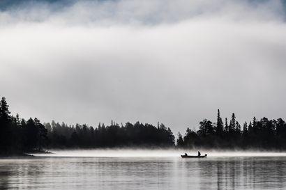 Viikon kuva: Aamuverkoilla Miekojärvellä