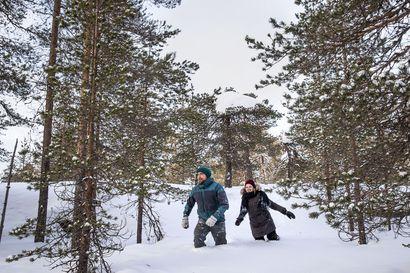 Rovaniemen Ounasvaaralta tuli myyntiin kolme hehtaaria luonnontilaista metsää, josta kiinnostui niin kaupunki kuin luonnonsuojelijat