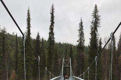 Nuorttijoen ylittävä silta valmistui Urho Kekkosen kansallispuistossa