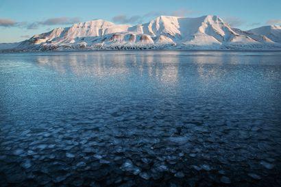 NRK: Jääkarhu tappoi telttailemassa olleen miehen Huippuvuorilla – ensimmäinen kuolemaan johtanut karhuhyökkäys yhdeksään vuoteen