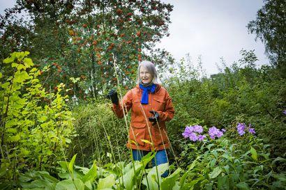 Syksystä alkaa puutarhan kevät – nyt on hyvä aika leikata pensaita ja istuttaa uusia kasveja, mutta kannattaako lehtiä haravoida vai ei?