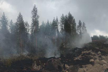 """Kalajoelle saatiin odotettua apua perjantaina: """"Sade estää palon leviämisen, mutta ei sammuta"""" – katso video savuavasta maastosta"""