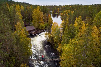 """Uusi opaskirja innostaa ympärivuotisille retkille kansallispuistoihin: """"Kansallispuistoissa kun riittää lumoa aina, ei pelkästään kauniina kesäpäivinä"""""""