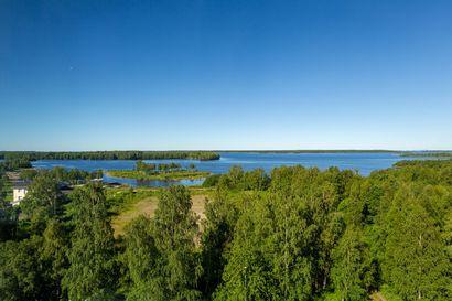 Kemin Kalkkinokalle ei nousekaan asuintaloja – väylävirasto ei halua siirtää pois Peurasaaren ranta-alueella kulkevaa pistorataa