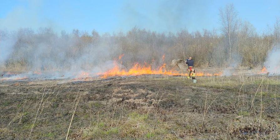 Maastoa palaa useissa kohdissa Letonniemessä.