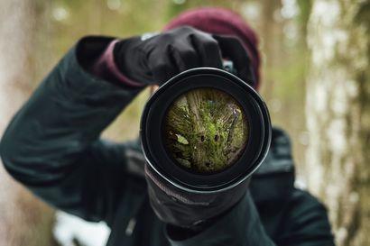 Valokuvakilpailu Lapin vuodenajoista
