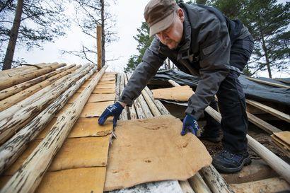 Kotiseutumuseon pihapiiriin valmistuu harvinaisuus Pyhäjoella: Aikaa kestävä perinnekatto vaatii 816 tuohiarkkia ja noin 400 malkaa