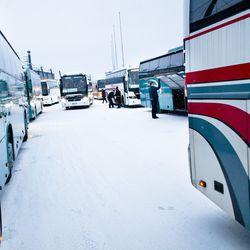 Lapissa ajaa ulkomaalaisia turistibusseja luvatta –Viranomaiset ratsasivat linja-autoja Rovaniemellä