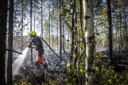 Rovaniemen Vennivaarassa roihahti maastopalo – Pelastuslaitos muistuttaa metsäpalovaarasta