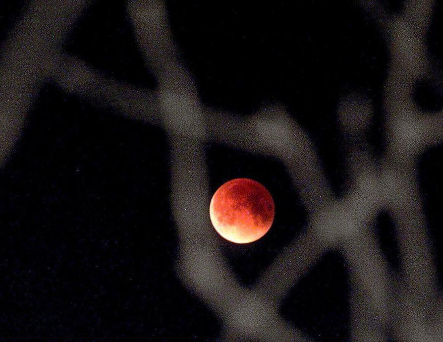Perjantai-iltana alkava kuunpimennys näkyy koko maassa.