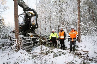 Stora Enso järjesti turvallisuusviikon omilla työmaillaan ympäri maailmaa – viikko näkyi myös Lapin hakkuutyömailla