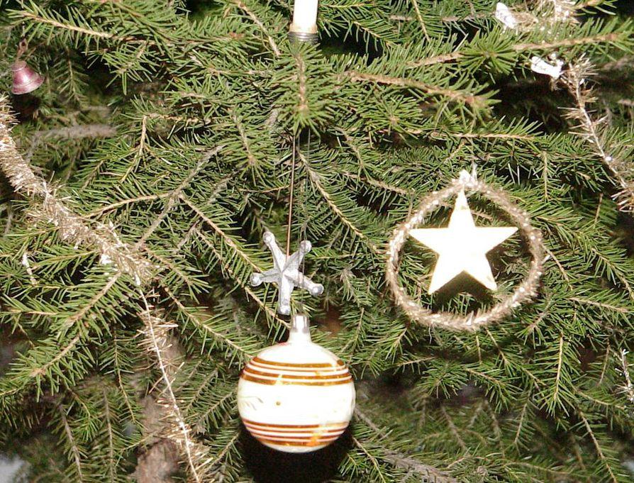 Juhlassa vieraita odottaa lämmin jouluateria jälkiruokineen sekä lauluesitys. Joulupukki kera pienten tonttusten ilahduttaa jokaista tulijaa lahjalla.